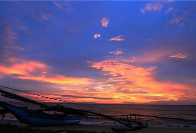 斯里兰卡狮子岩 康堤 小英国 美蕊沙 观鲸观野生动物(9日行程)