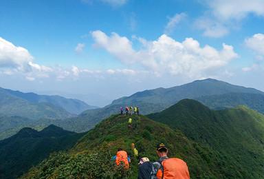 云南 哀牢山原始森林徒步穿越(6日行程)