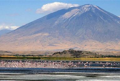 坦桑尼亚 全年多起 曼雅拉湖 恩戈罗恩戈罗火山(9日行程)