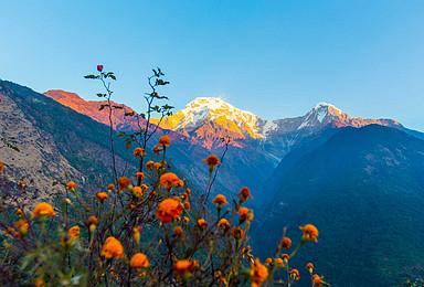 尼泊尔 博卡拉 安娜普尔纳 鱼尾峰布恩山 小环线徒步(8日行程)