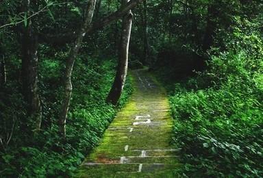 穿越湘西 张家界 天门山 槟榔谷徒步游(4日行程)