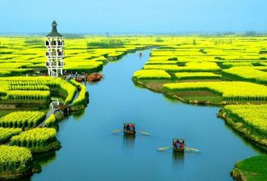 烟花三月下扬州 水上千岛油菜花 瘦西湖 何园火车团(4日行程)