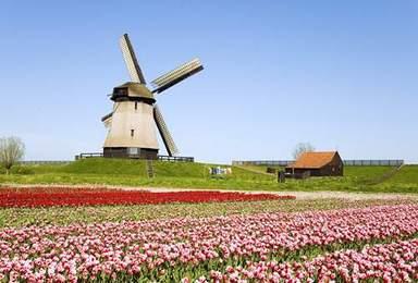 高端骑游路线 明年春天骑游荷兰 欣赏花园国家(9日行程)