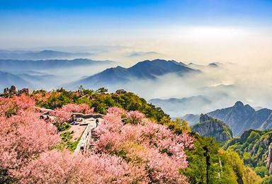 徒步泰山看云海日出 赏桃花峪人间仙境(2日行程)