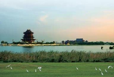 想来挑战一下吗 50km环阳澄湖(1日行程)