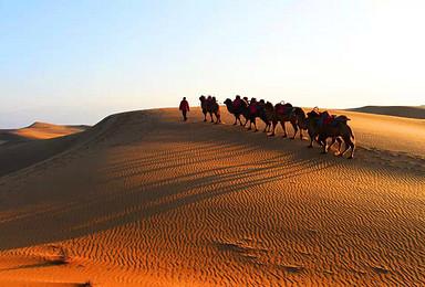 腾格里沙漠穿越 五一特辑(5日行程)