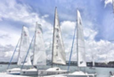 帆船体验 美国帆船X职业教练X寻找白海豚X环岛南路接送(1日行程)