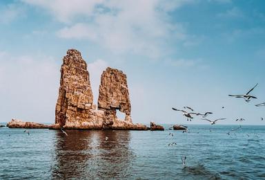 面朝大海 春暖花开 万鸟岛 蓬莱阁 拍海鸥戏海豹 吃海鲜(4日行程)