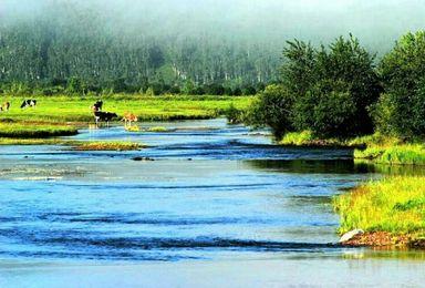 呼伦贝尔小时向导带您游呼伦贝尔兴安盟漠河南北大环线(1日行程)