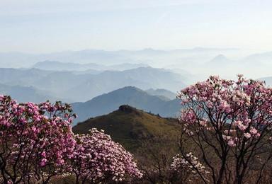 观景摄影 穿越丛林 云海日出星空 绵阳 牛背山(2日行程)