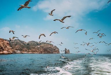 端午大巴蓬莱阁 长岛 庙岛 万鸟岛 月亮湾 海岛浪漫之旅(3日行程)