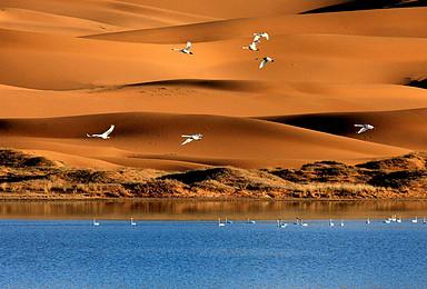 端午行摄腾格里 玩动户外腾格里沙漠五湖轻装穿越(3日行程)