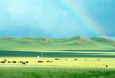 锡林格勒草原白音敖包 贡格尔河 砧子山 达里湖 曼陀山(3日行程)