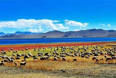 川藏线黄金旅游线路 最美的诗与远方(10日行程)