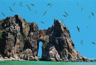 端午出游 蓬莱长岛向往的生活 海岛撒欢品海鲜大餐(4日行程)