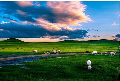 锡林郭勒 锡林格勒草原 达里诺尔湖 勃隆克沙漠 玉龙沙湖(4日行程)