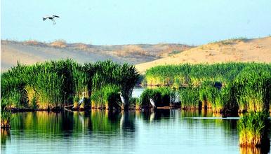火车团 沙坡头 腾格里沙漠 黄河第一索 西部影视城(3日行程)