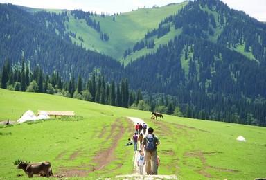 新疆环线 喀纳斯 伊犁 吐鲁番 禾木大 那拉提深度纯玩活动(14日行程)