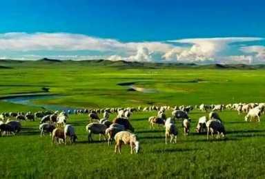 呼伦贝尔 天堂草原亲子 自由自然穿越之旅(6日行程)