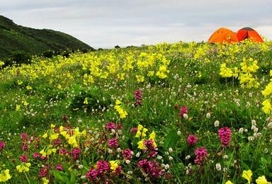 九顶山徒步赏花(3日行程)