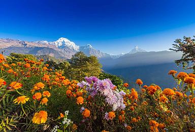 世界第十高峰 尼泊尔 安娜普尔纳大本营ABC 喜马拉雅徒步(11日行程)