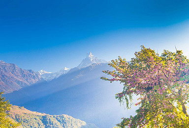 尼泊尔安娜普尔纳大本营 徒步(11日行程)