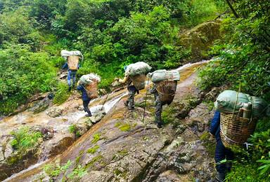 探秘高黎贡山 贡山穿越独龙江 近距离接触野生动物(10日行程)