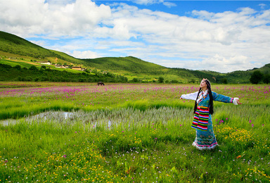彩云之南 我心的方向 丽江 香格里拉 梅里雪山 泸沽湖(5日行程)