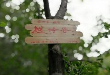 8 5日 原生态越岭谷穿越分水岭 赏秦岭南坡大瀑布(1日行程)