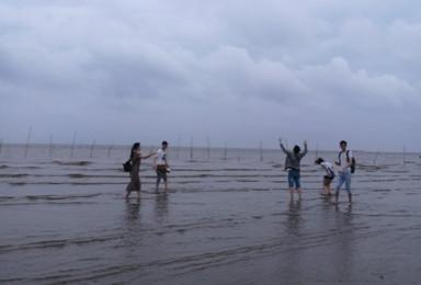 九段沙原生态湿地踏浪去(1日行程)
