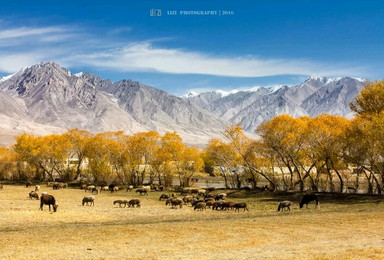 南疆多类型旅行体验自由行(10日行程)