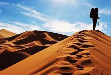 徒步大漠腾格里 天鹅湖露营体验5日游(5日行程)