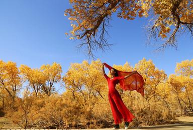 带你玩转西北沙漠奇观 丝绸之路 绝美胡杨林(10日行程)
