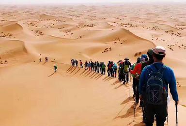 用脚步丈量沙漠 遇见腾格里 中卫沙坡头露营(2日行程)