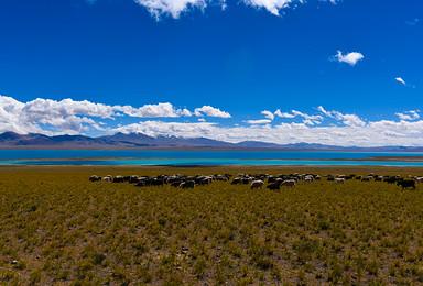 西藏阿里大北线探险之旅 冈仁波齐转山 珠峰 双湖 深度纯玩(16日行程)