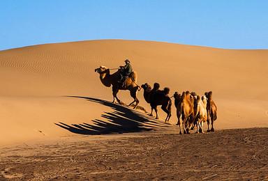 国庆额济纳 最美胡杨林 腾格里沙漠越野穿越(6日行程)