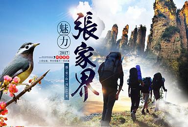 张家界森林公园天门山玻璃栈道户外旅游定制(3日行程)