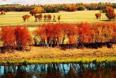 秋季呼伦贝尔 海拉尔 满洲里 阿尔山 穿越黑山头(6日行程)