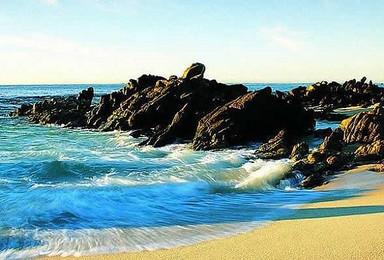 青岛 5A崂山 金沙滩(4日行程)