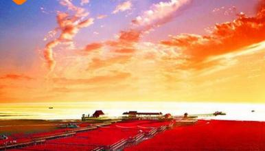 红海滩 海上赏明月 红海滩 锦州笔架山盘锦红海滩(3日行程)