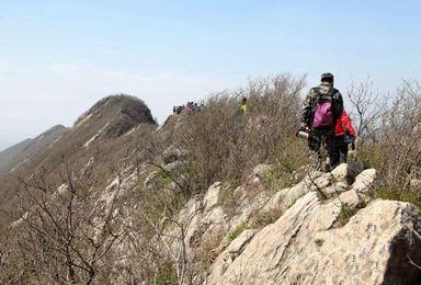 行走镇江高骊山 体验山脊野路(1日行程)