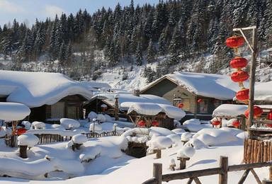 冰情雪韵哈尔滨 大雪谷穿越 雪乡 原生态冬捕 长白山 雾凇岛(7日行程)