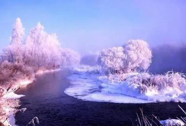 雪乡专线 吉林雾凇岛雪乡激情穿越哈尔滨冰雪大世界中央大街(3日行程)