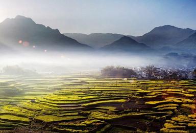 11月10日至12日龙须山全程 指南村 探龙脉赏银杏(2日行程)