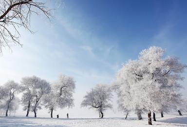 火车团 雾凇岛 雪乡 雪谷 冰雪大世界 穿越林海雪原(4日行程)