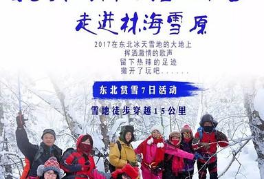 北国经典 最美雪山徒步 走进林海雪原(7日行程)