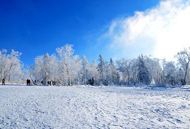 东北雪乡童话世界 林海雪原穿越雪谷 雪乡(3日行程)