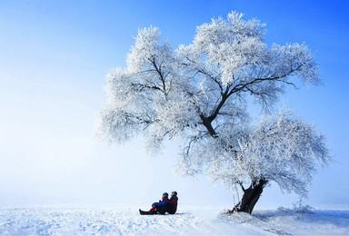 东北雪乡雪谷 撒野 穿越 看冰雕 赏雾凇 品尝冰冻糖葫芦(7日行程)