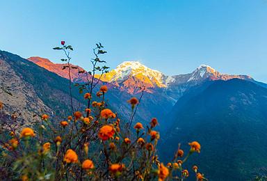 高端精品团 尼泊尔 鱼尾峰 安纳普尔纳峰 ABC环线徒步(10日行程)