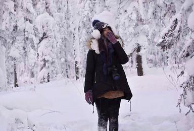 哈尔滨 雪谷 雪乡 镜泊湖 长白山 滑雪场 雾凇岛 吉林(7日行程)